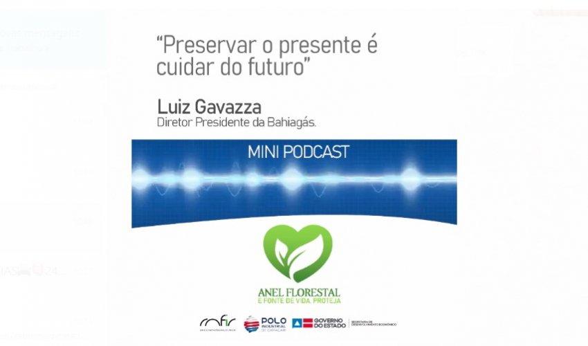 [Mini Podcast Anel Florestal. Clique e ouça o áudio!]