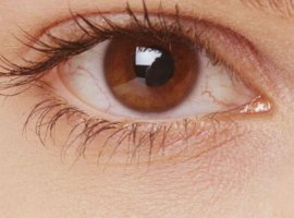 [Veja quais são os problemas oculares que podem afetar sua saúde]
