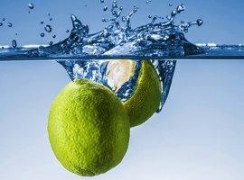 [Água com limão: 6 motivos para consumir todos os dias de manhã]