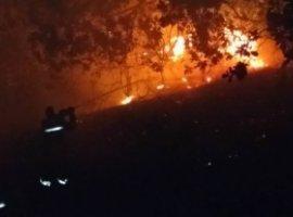 [CLN intensifica monitoramento para controle de incêndios florestais na BA 099]
