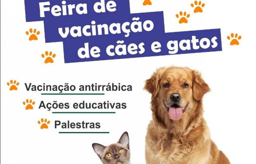 [Feira de vacinação de cães e gatos acontece no Verde Horizonte]
