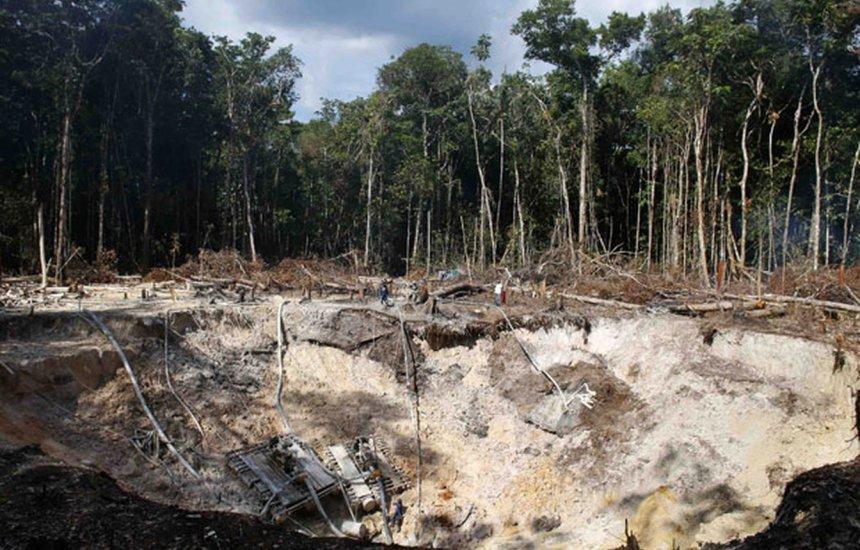[Brasil é 4º país que mais mata ativistas ambientais, diz ONG]