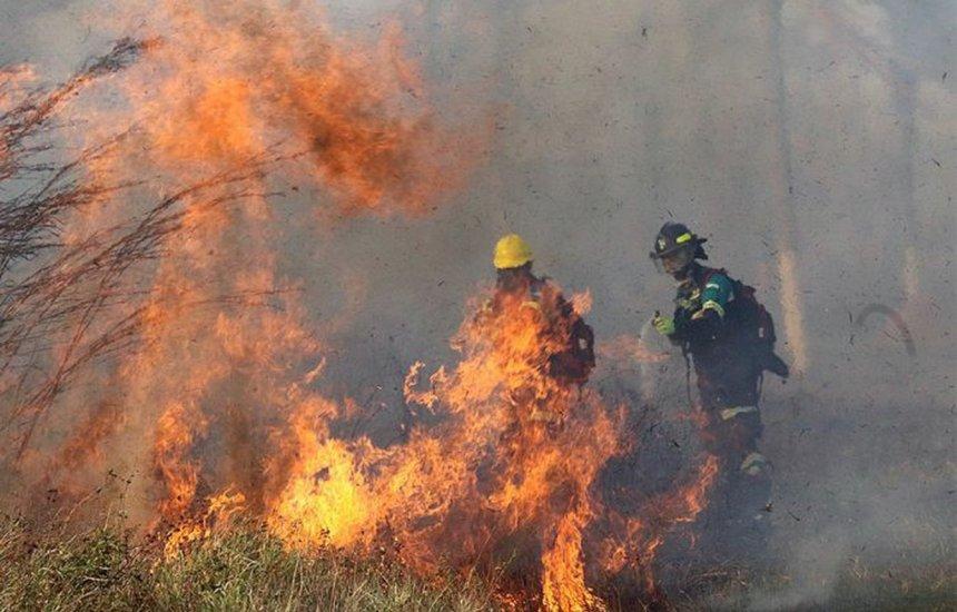 [Incêndio destrói 500 mil hectares de vegetação na Bolívia]