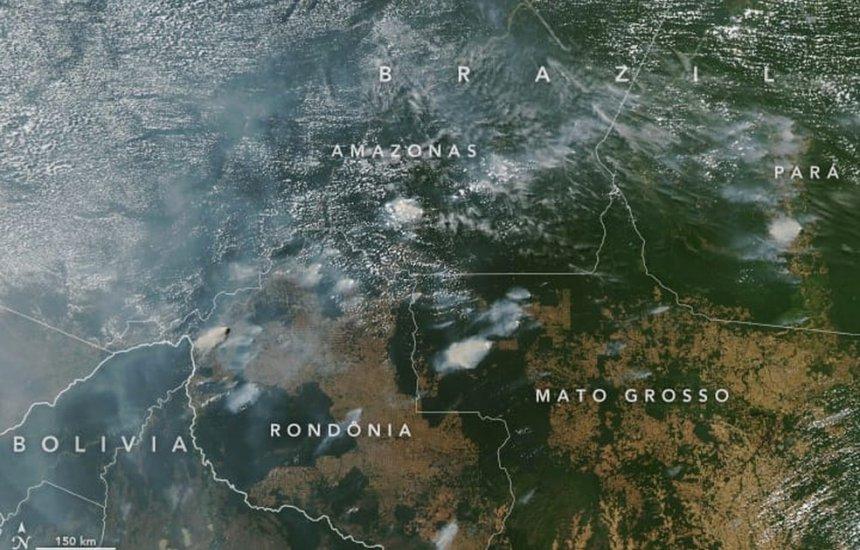 [Amazônia influencia chuvas na América do Sul e é vital para o mundo; entenda]