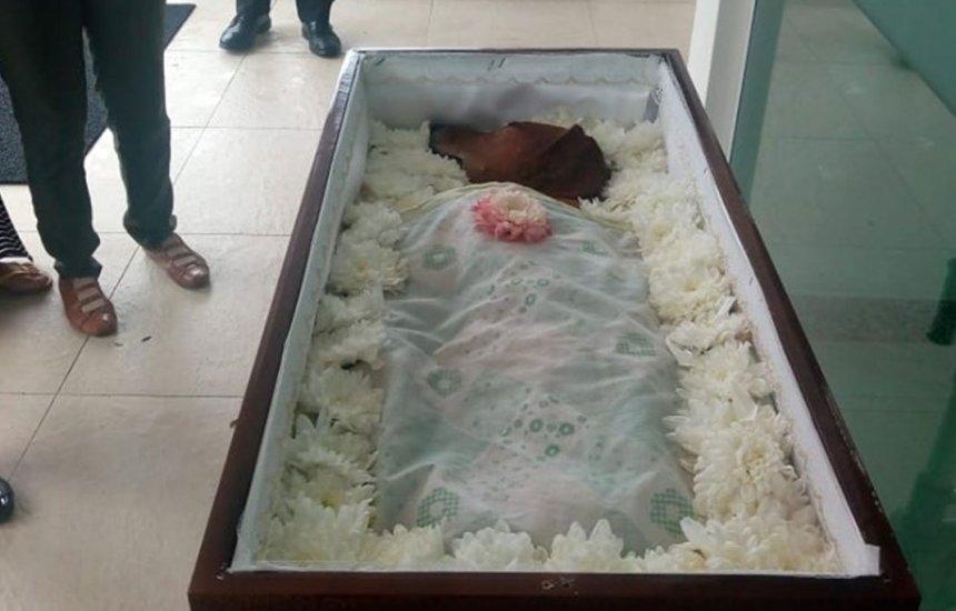 [Foto de cachorro sendo 'velado' em caixão na Bahia viraliza]