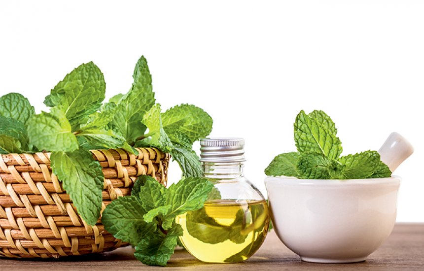 [Benefícios do óleo de hortelã para o esôfago]