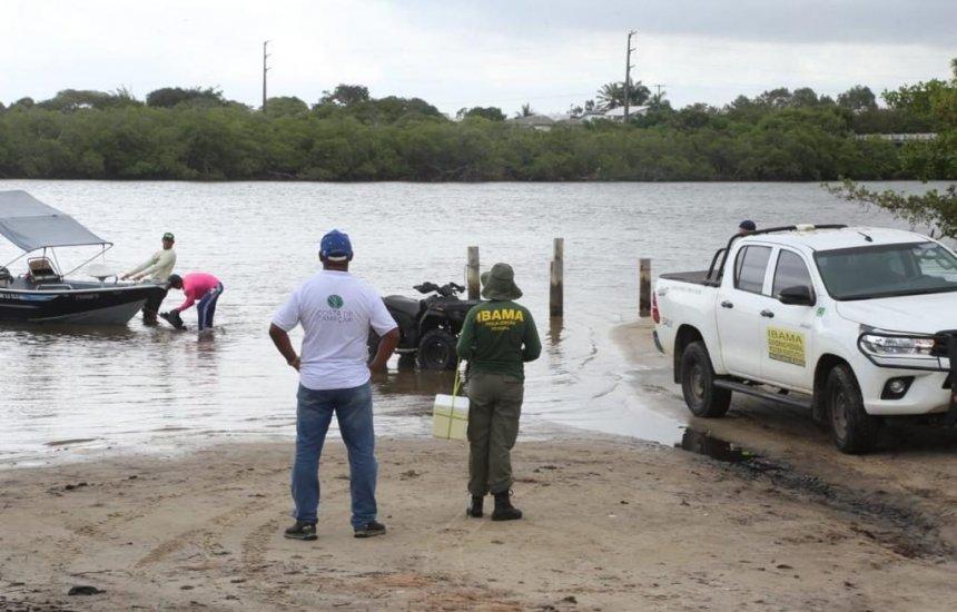 [Praia de Jacuípe recebe mutirão de limpeza para remoção de manchas de óleo]