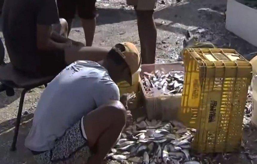 [Dois meses após óleo em Salvador, pescadores ainda relatam vendas baixas]