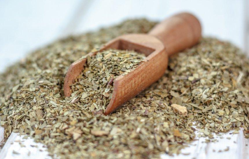 Benefícios do chá mate vão do emagrecimento até a proteção do coração