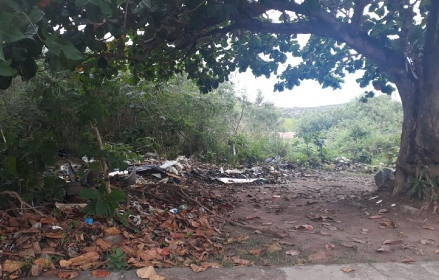 [Seu Bairro no CN: moradora de Catu de Abrantes reclama de acúmulo de lixo, mato e insetos]