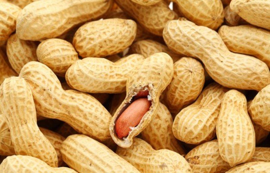 [Conheça 8 benefícios do Amendoim]