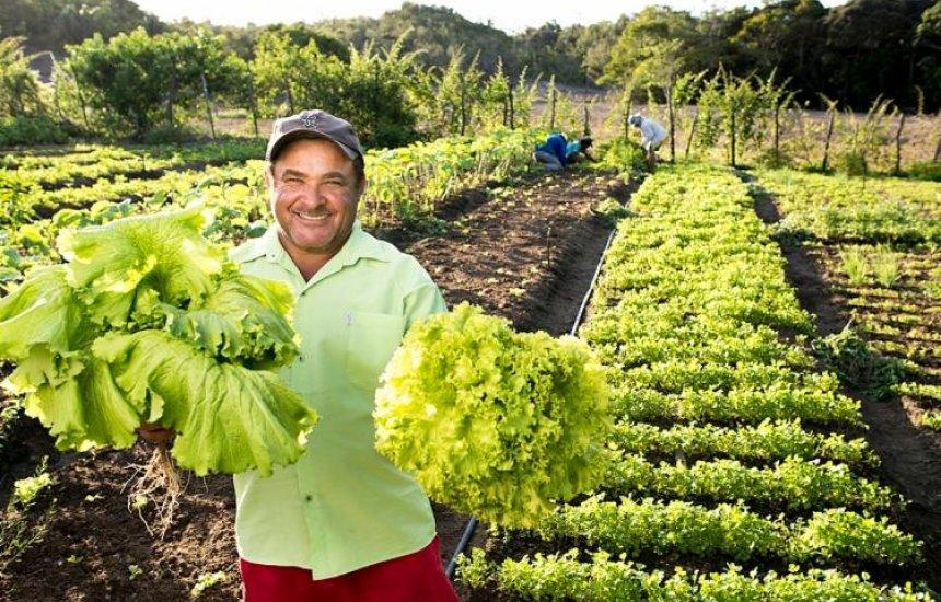 [Projetos agrícolas de Mata de São João concorrem a edital emergencial do Bahia Produtiva]