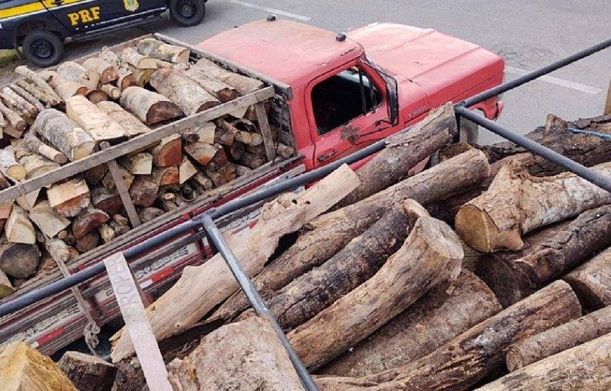 [PRF apreende carregamentos de madeira sem licença ambiental]
