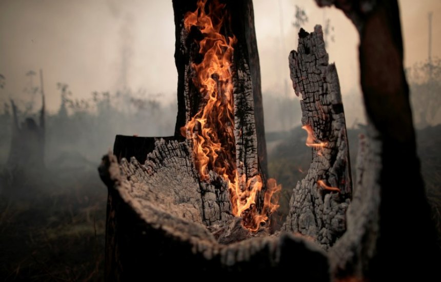 [Mesmo com pressão internacional, queimadas na Amazônia aumentam 28% em julho]