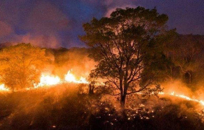 [Governador pede Força Nacional no combate às queimadas no Pantanal]
