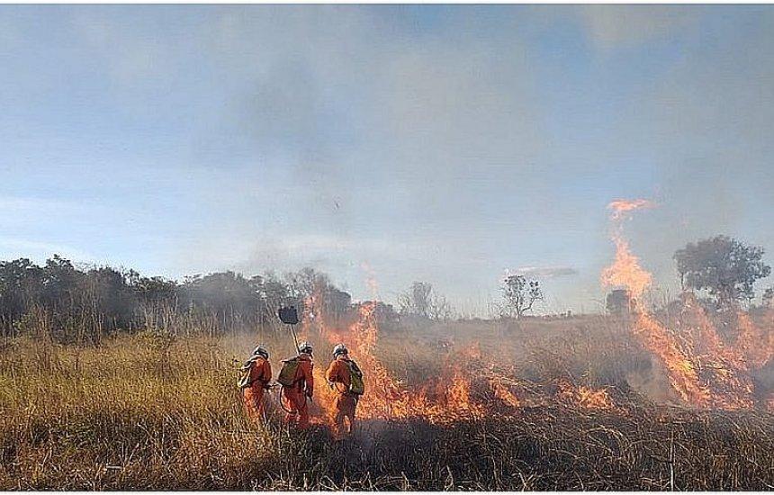 [Oeste da Bahia: Incêndio florestal em Barra se aproxima de casas de moradores]
