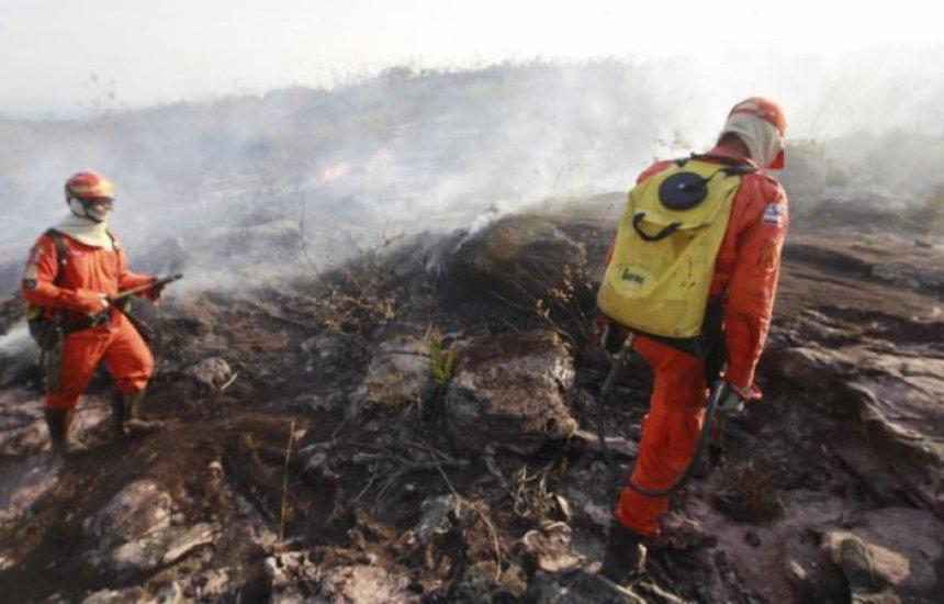 [Ibama é autorizado a contratar temporariamente 1.659 profissionais para atendimento emergenciais]