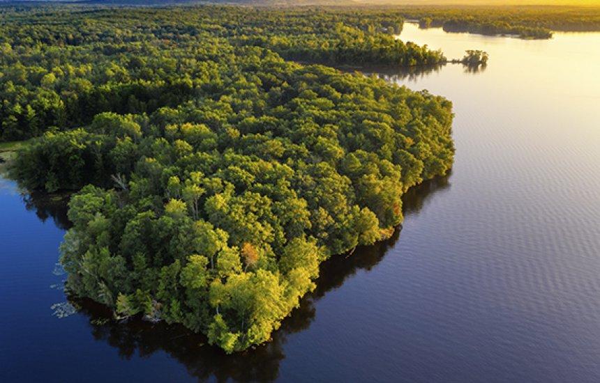[Amazônia Legal ocupa quase 60% do território brasileiro, mostra IBGE]
