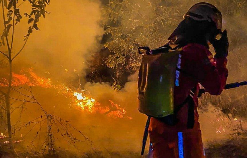 [Bahia concentra 25% das queimadas na região Nordeste em 2021, diz INPE]