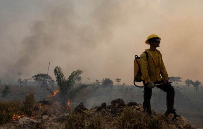 [Brasil é o quarto país do mundo que mais mata ativistas ambientais, diz ONG]